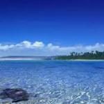 Ocean Subsurface Fields