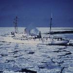 Sea Ice